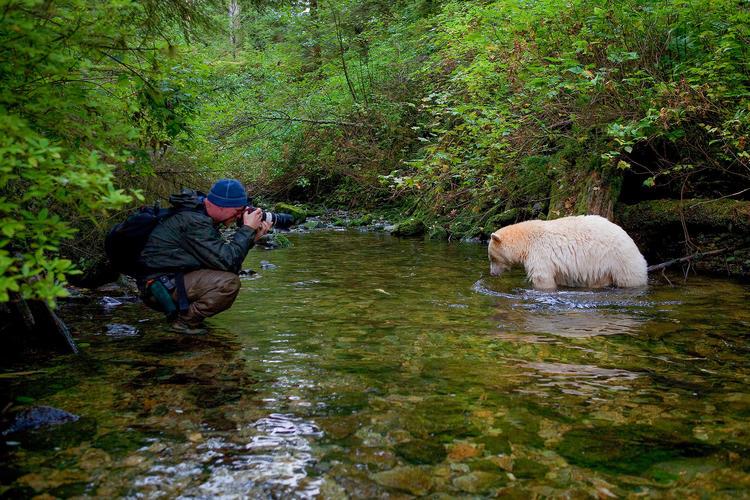 ناشونال جيوغرافيك, انستجرام, صور, حيوانات, طبيعة